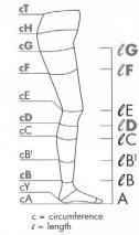 measuring leg